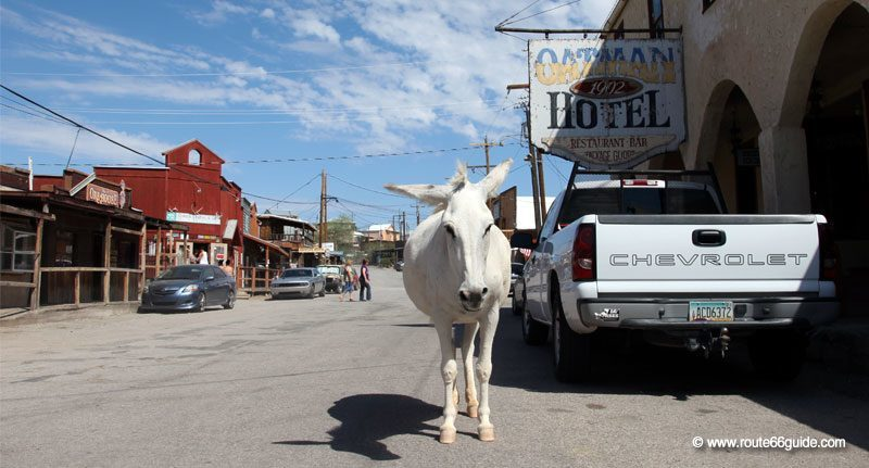 Oatman in Arizona